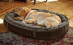 TRCP Orvis Dog Bed photo